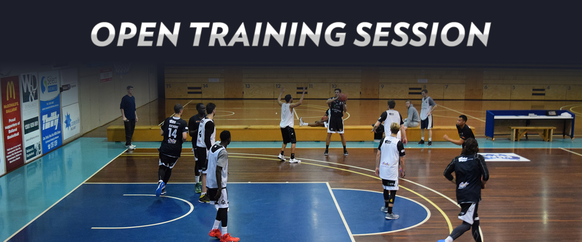 Basketball Sports Store Melbourne - Joe Maloy b3eed3f8e